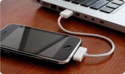 Cable de recharge et synchro iPhone et iPod ,22cm
